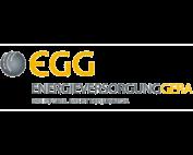 Energieversorgung Gera Logo