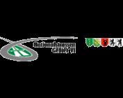 St. Gallen, Nationalstrassen Gebiet VI Logo